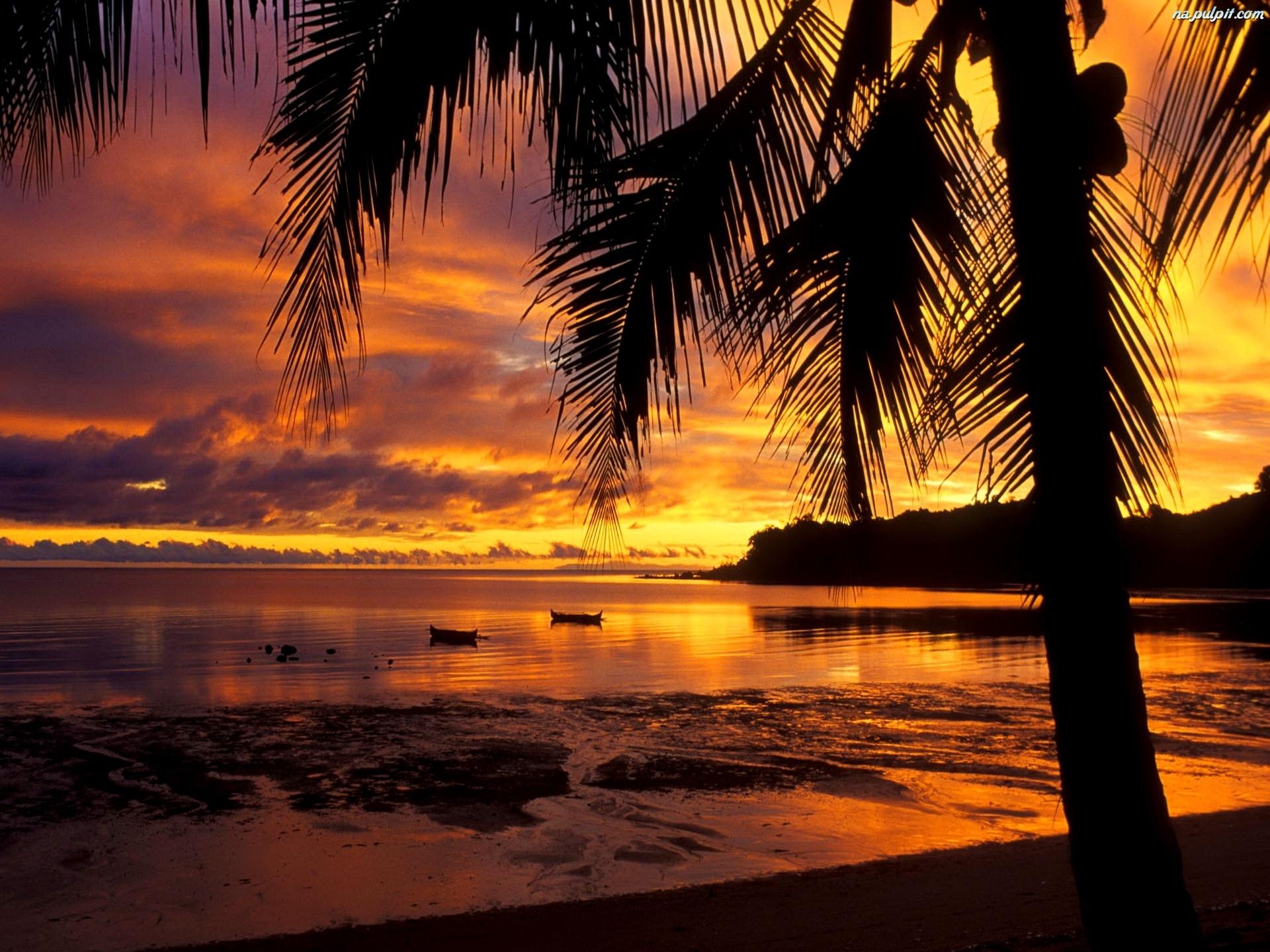 [Resim: palma-zachod-slonca-morze-1.jpeg]